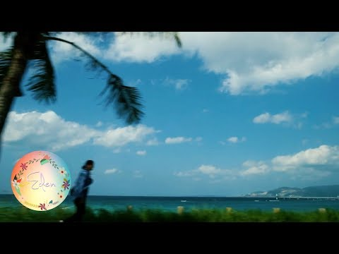 Travelling from Okinawa to Tokyo - Japan Holiday 2017