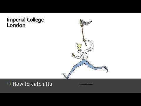 How to catch flu