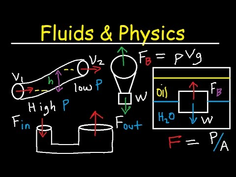 Fluid Pressure, Density, Archimede & Pascal's Principle, Buoyant Force, Bernoulli's Equation Physics