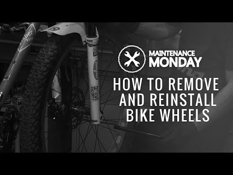 Maintenance Monday | How To Remove and Reinstall Bike Wheels