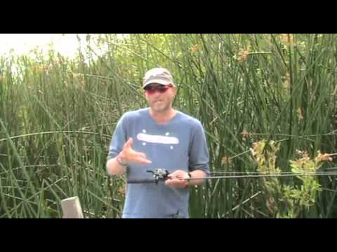 When to change your monofilament line. Tips and tricks by Central Coast Bass.