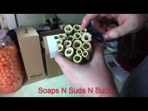 Pollinators  Mason, Leaf cutter solitary bees in tubes