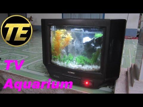How To Build a TV Aquarium