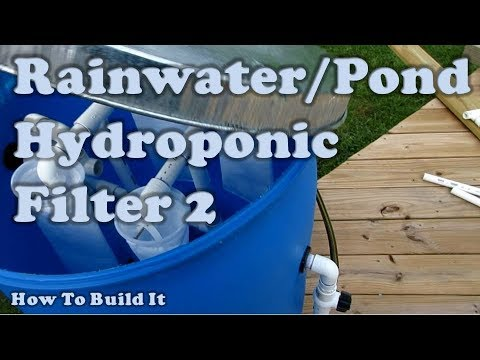 Pond and Rainwater Hydroponic Filter Build