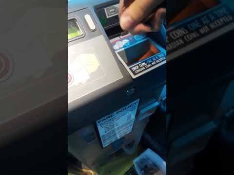 Guy pays for the bus in pennies #2018 B7 Funny moment's