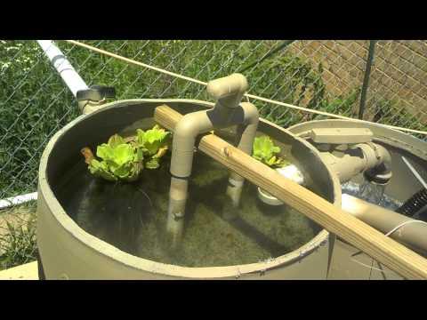 Diy sand/gravel pond filters