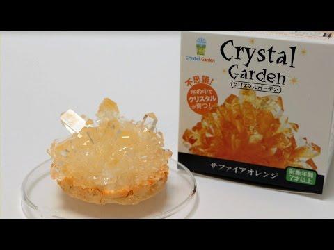 DIY Crystal Making Kit