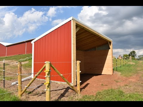 DIY Building Lean Barn Shelter for Horses or Cattle