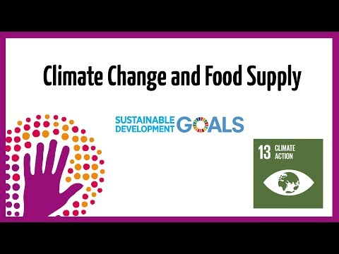 Climate Change and Food Supply