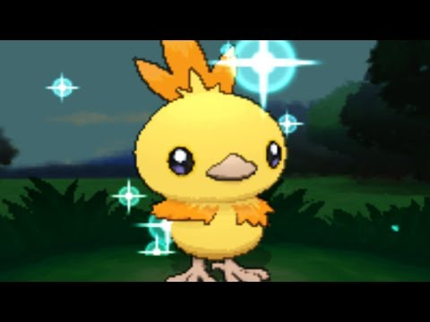 Pokemon X and Y - SHINY TORCHIC w/Speed Boost ONLY AFTER 22 EGGS! 31/31/31/x/31/x