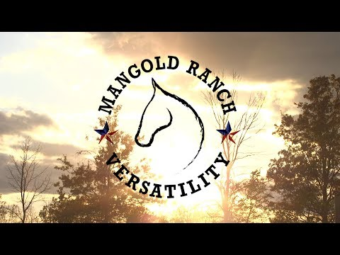 Mangold Ranch Versatility ---  WNY EquiFest 2018