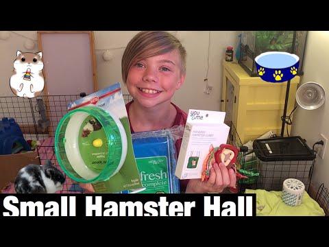 Small petco hamster hall