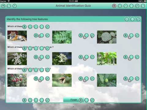 Quiz Maker - Create a quiz on an iPad