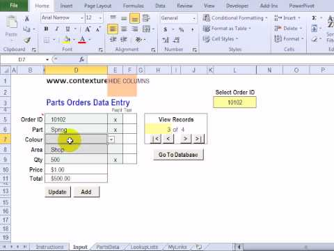 Customize the Excel Worksheet Data Entry Form
