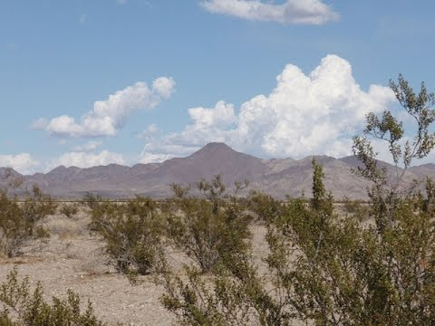 SOLD: Ridiculously Cheap, Johnson Valley CA 2.5 Acres