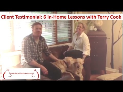 Dog Training For Multiple Dogs in Columbus Ohio w/ Terry Cook: Client Testimonial: 6 In-Home Lessons