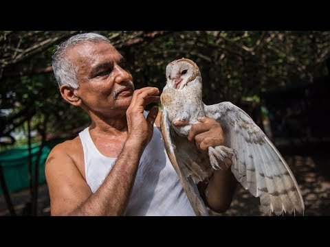 The Indian Doctors Who Created An Animal Ark | WILDEST ANIMAL RESCUES
