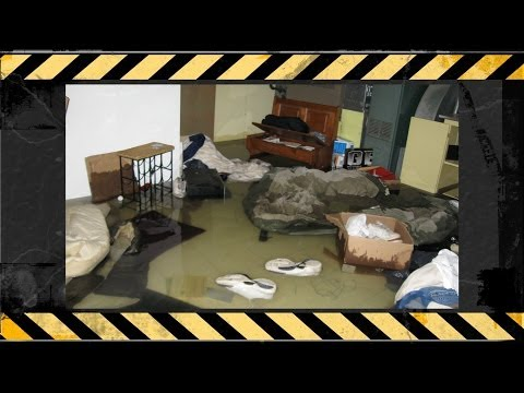 What to Do if You Have a Flood in Your Home in Denver