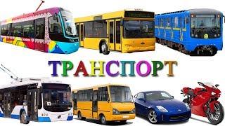 Download Городской транспорт и Железная дорога развивающее видео. Игрушки поезда для детей и вагон Метро Video