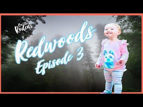 Redwoods National Park (Full Time RV Travel) S1:Ep. 3