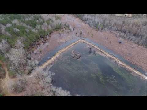 Summerton Duck Pond 1