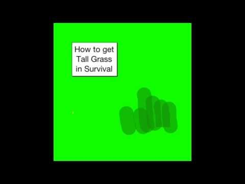 MCPE: How to get Tall Grass in Survival