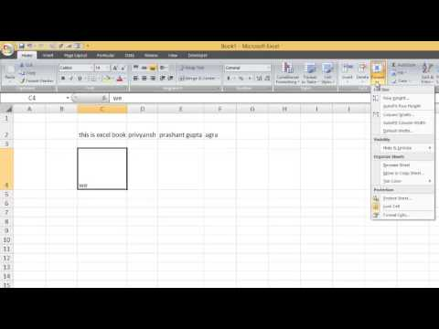 How to Change Row and Columns height and width in Excel in hindi part 2 by Privyansh