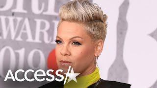 Pink Blasts Donald Trump Supporters