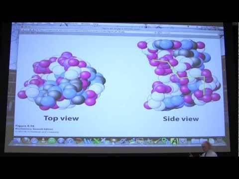 #41 Biochemistry DNA Replication I Lecture for Kevin Ahern's BB 451/551