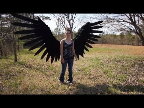 Pneumatic Articulated Wings By Phenomenon Props And Effects