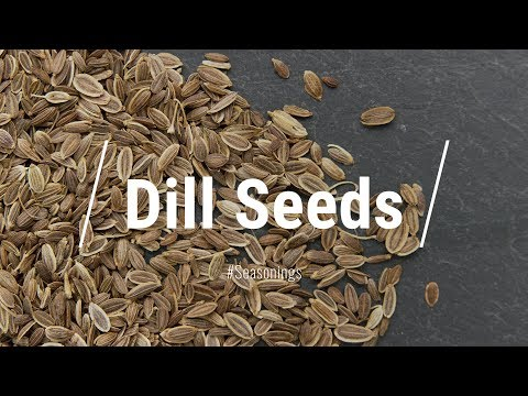 All About Dill 'Seed' || Le Gourmet TV Recipes