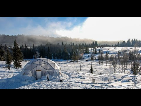Winter Gardening In A Growing Dome: No Heat Required