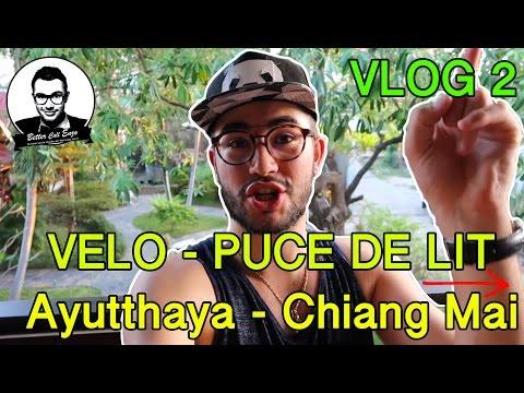 Vlog Thailande - Vélo et Puces de lit de Ayutthaya à Chiang Mai