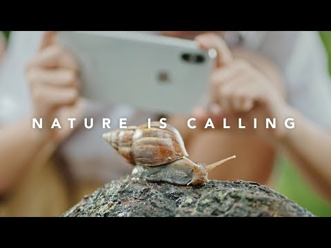 Singtel & iPhone X vs Nature