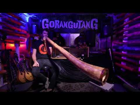 Agave Multidrone Didgeridoo in C# - AG011