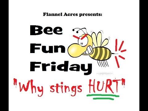 Why Stings HURT -- Bee Fun Friday!