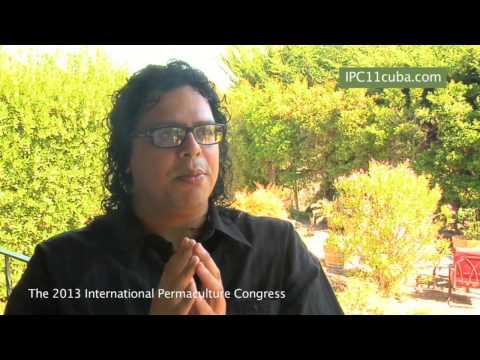 International Permaculture Congress 2013