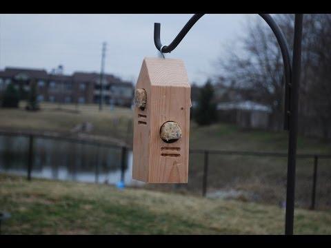 How to Make a Woodpecker Feeder (woodlogger.com)