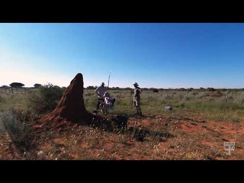 Termite mounds in Namibia inspire energy-efficient buildings