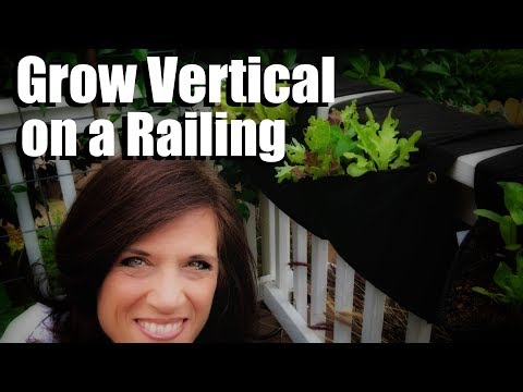 How to Garden Vertically on a Railing and in Stacked Containers // Small Space Garden Series #6