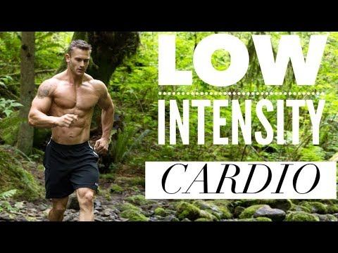 The Effect of Low Intensity Steady State Cardio