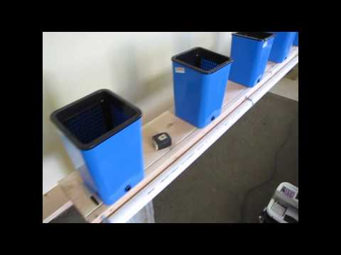 D.I.Y Hydroponics System part 3