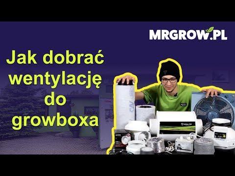 Jak dobrać wentylację do growboxa?