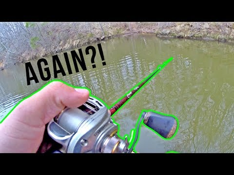 THIS BITE IS INSANE!! Fishing The Day AFTER A Tournament & Catching BIG SPRING BASS On One Lure!