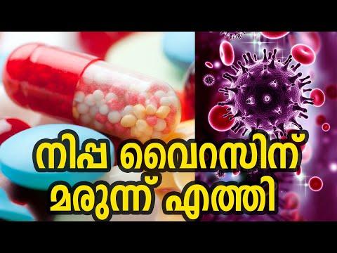 നിപ്പ വൈറസിനെ  പ്രതിരോധിക്കാൻ  റിബ വൈറിൻ | Nipah Virus Medicine