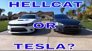 Download HELLCAT OR TESLA WHICH WOULD YOU TAKE? Video