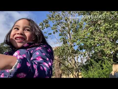 Making Memories: Zoey goes to Auckland Zoo (again) :)