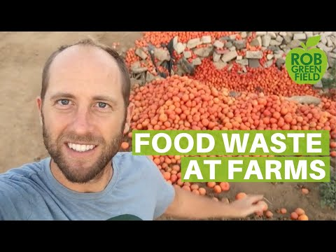 Food Waste at Farms in USA