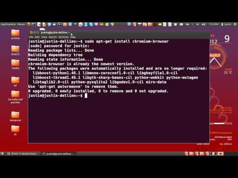 install chrome in ubuntu 12.04