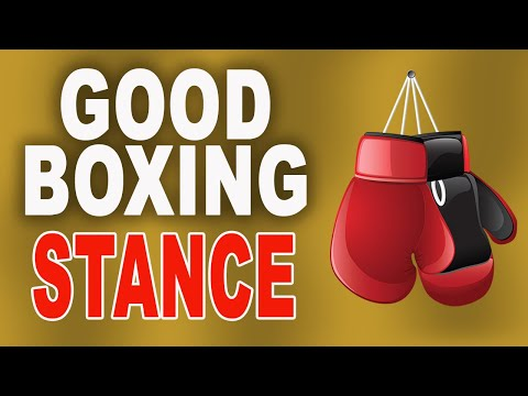 Beginner Boxing - Basic Boxing Stance and Punches Training/Tutorial